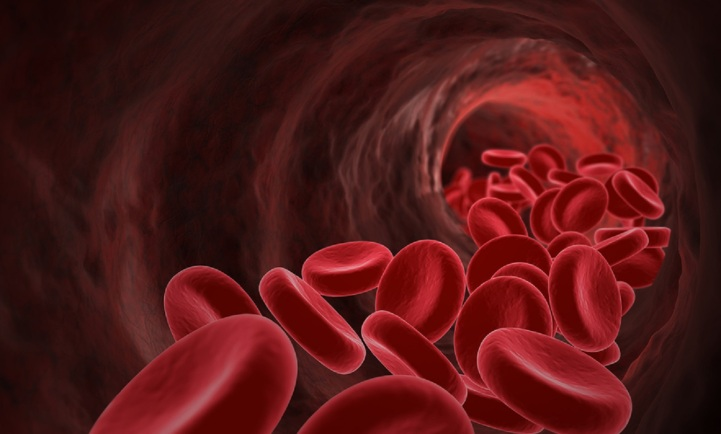 Red Blood Cells- medical concept. 3D image.