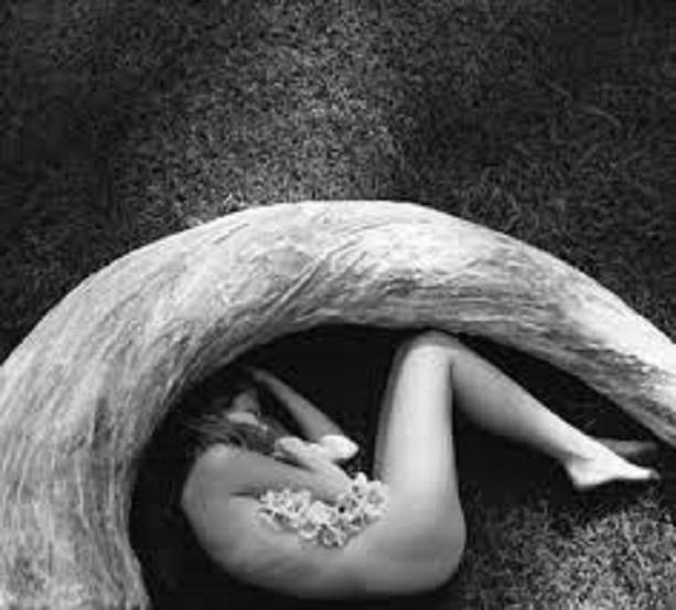 stilllife sheryl maree reilly womeninphotography com