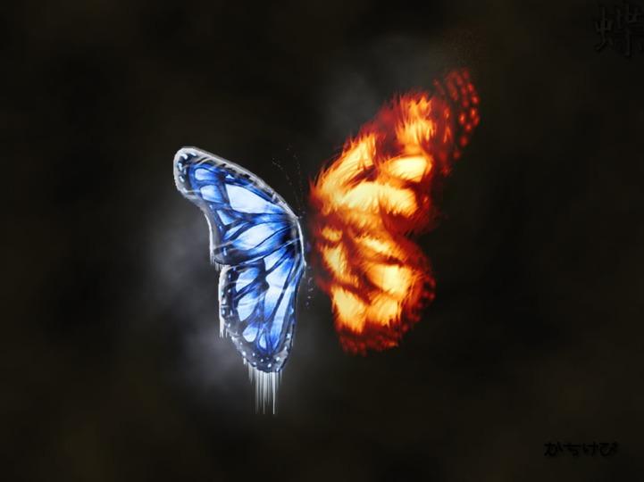 butterfly cursosyterapiasreikienmadrid blogspot com