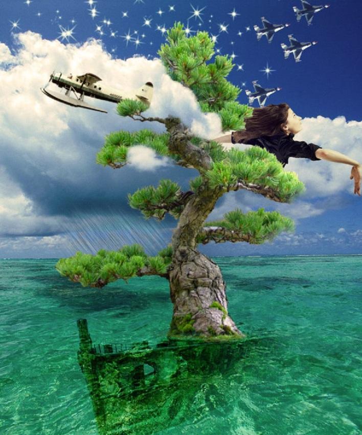 water deviantart com tree_on_water_by_mahaloo