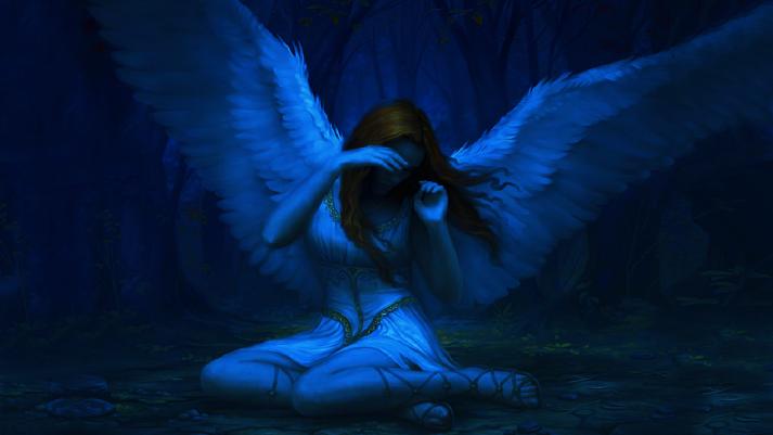blue mydek-d com