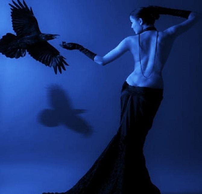 close pinterest com ravens