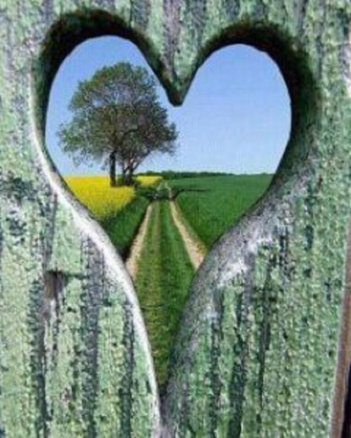 heartpath flowwithjo com