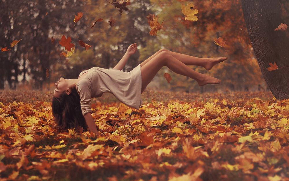 leaves deviantart com fallen_leaves__by_mjob-d5zpspx