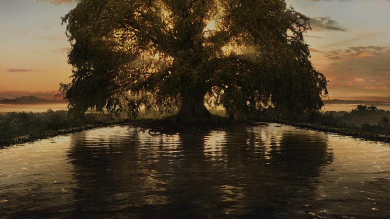 nine seriousmovies com tree 2