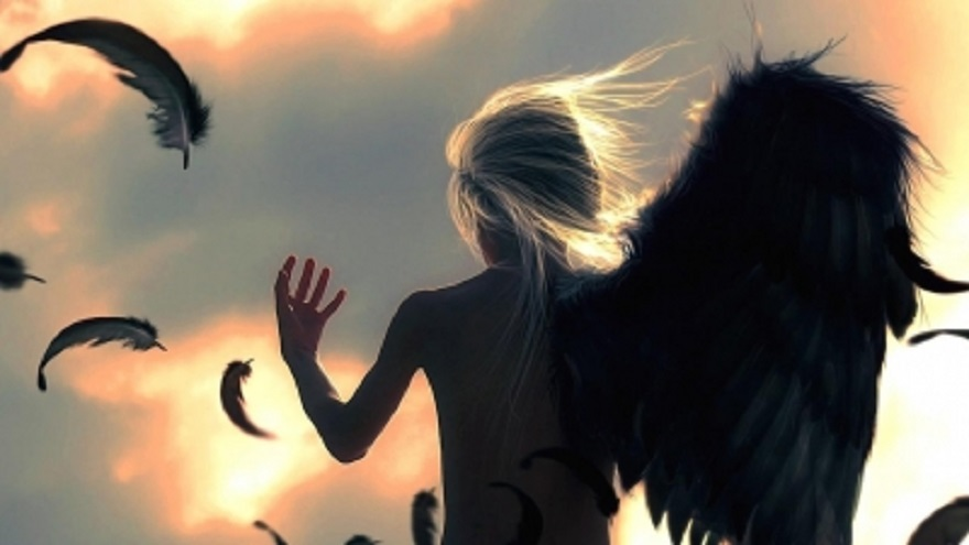 trail hdwallpaperpc com Fantasy_Angel_Angel_Wings_Drawing_Feathers_43171_detail_thumb