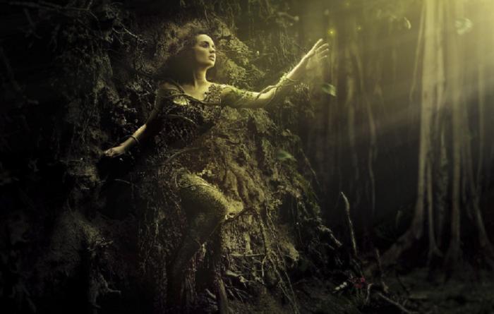 tree woman 2