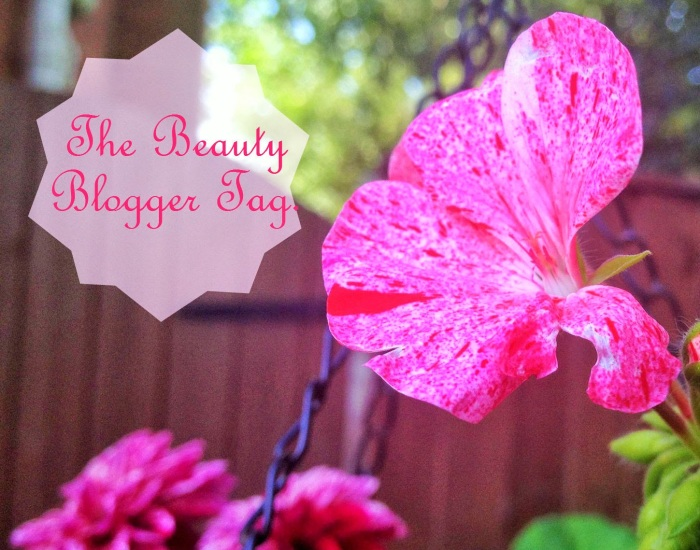 Beauty Blogger 3