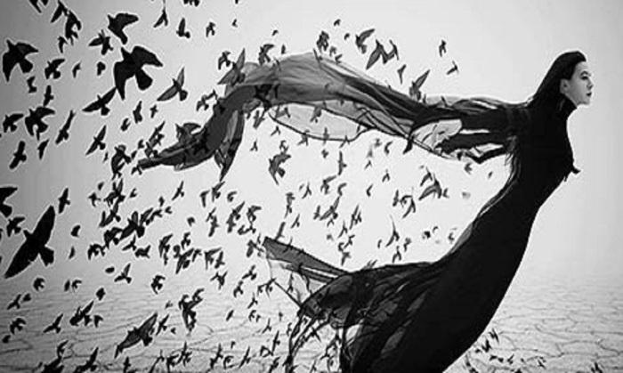 fly danceforallpeople com