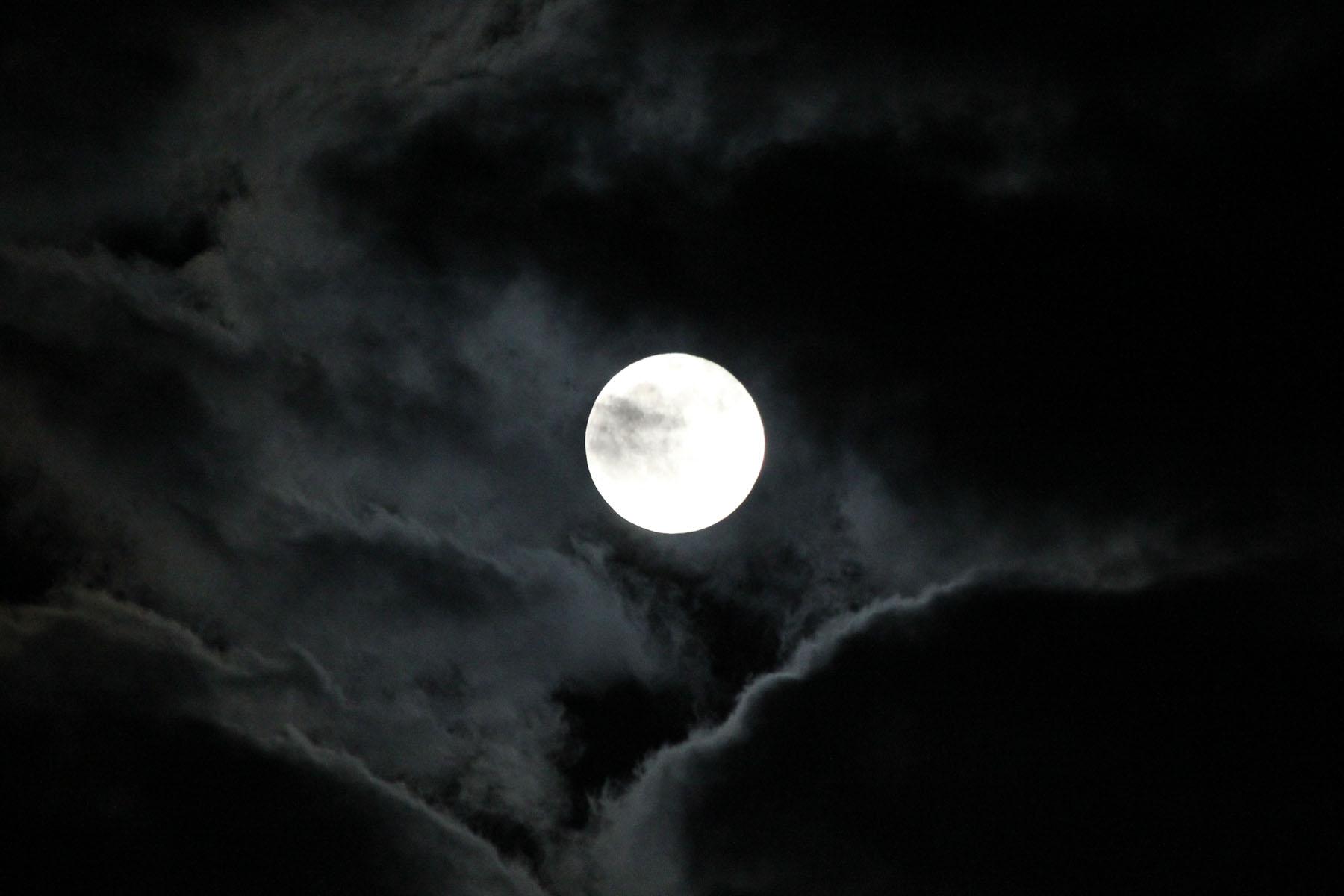 moon andberlin com.jpg