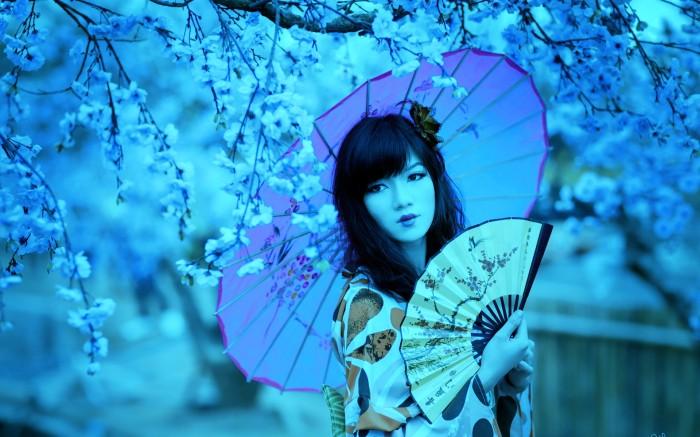cherry blossom vividscreen com (2)