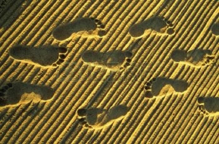 footsteps 123rf com