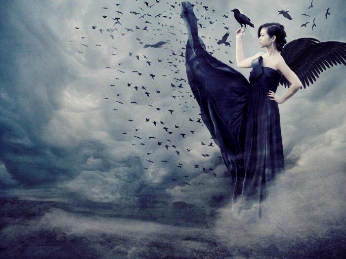 ravens pixiecampbell com