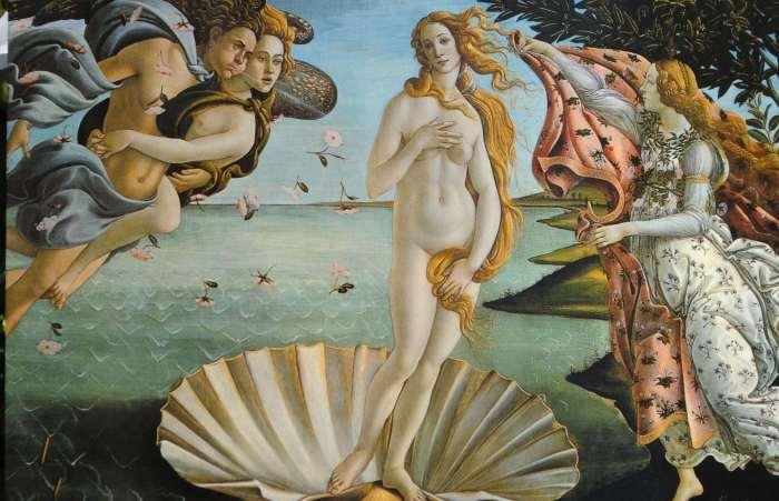 Venus happygogive com