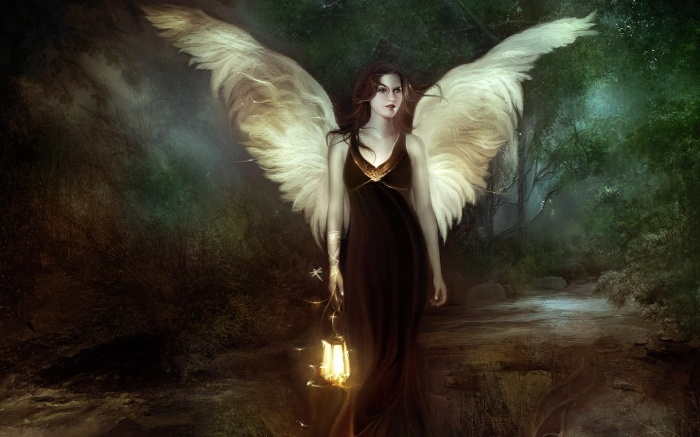 wings nice-cool-pics com
