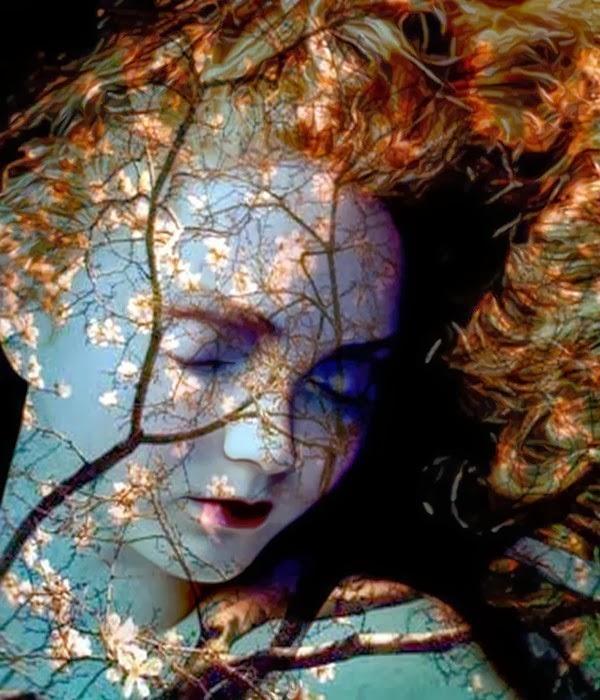 flowerwoman Lyse Marion ego-alterego com