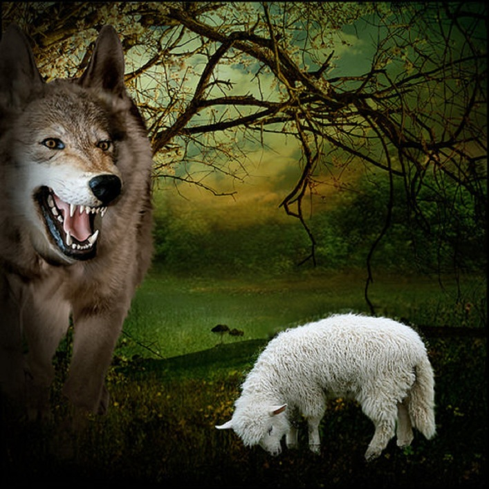 lamb taletown org