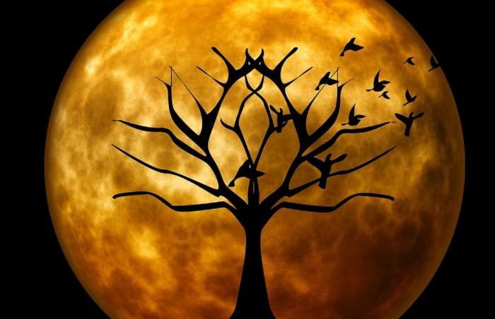 moon pixabay com 3