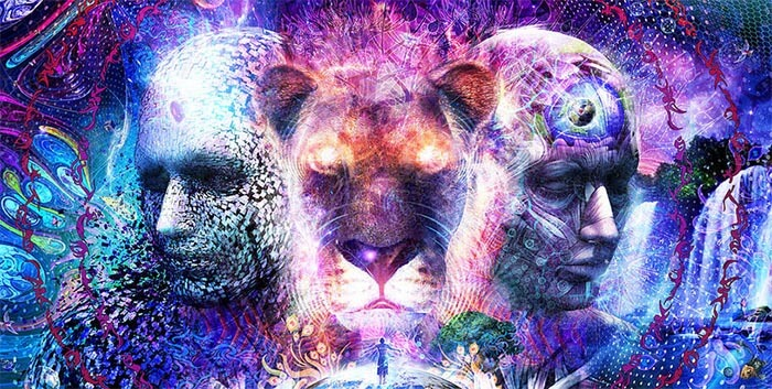 purple lonerwolf com.jpg