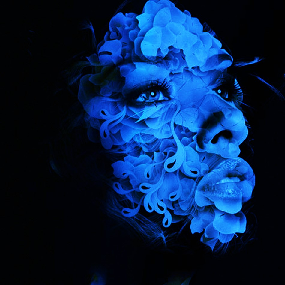 flower forumwebmaster com (2)