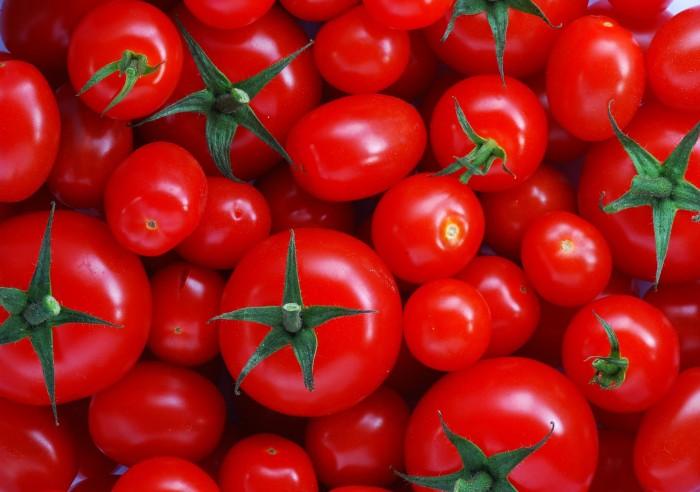 tomatoes pinterest com 2.jpg