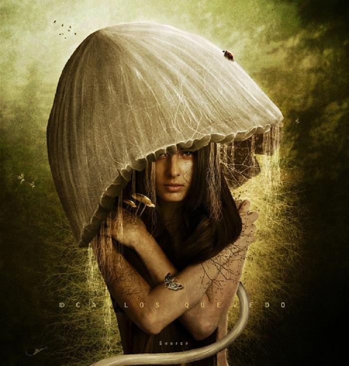 bell mushroom-art-carlos-quevedo