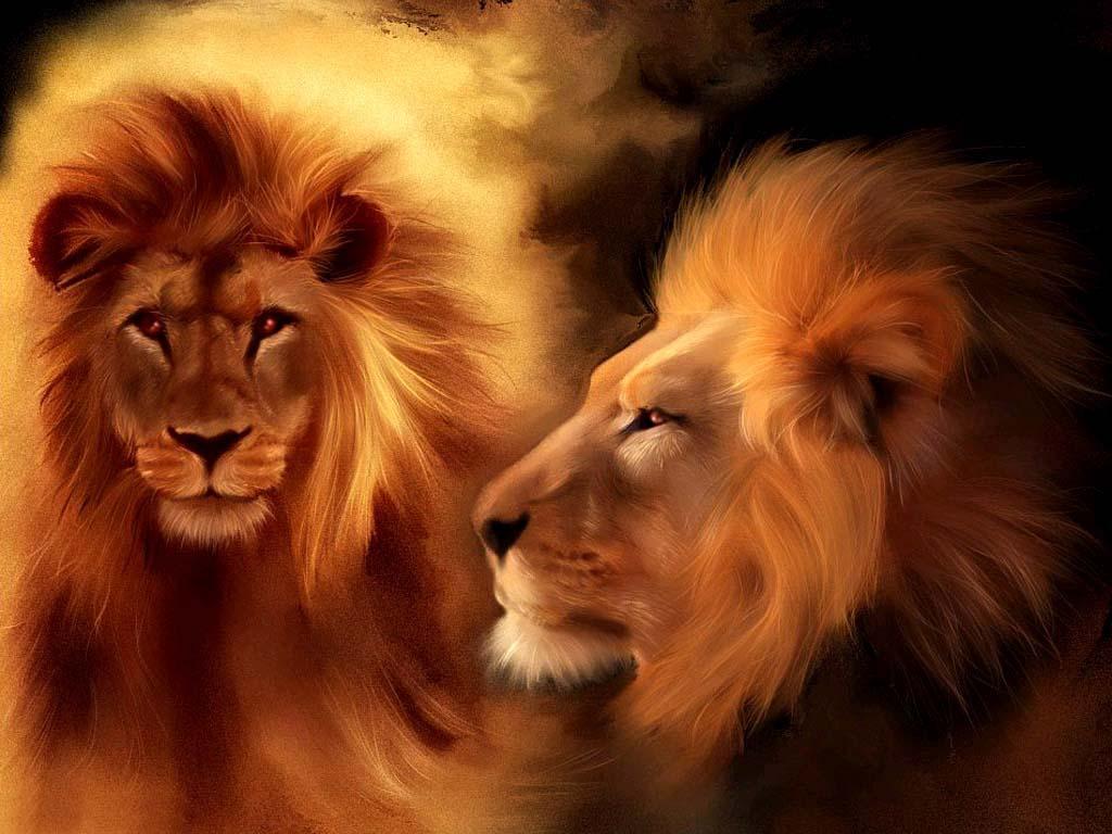 lion-pinterest-com