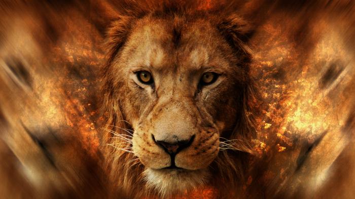 lion-wallhaven-com