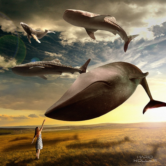 cocreate-artstation-com-mario-koller-whales