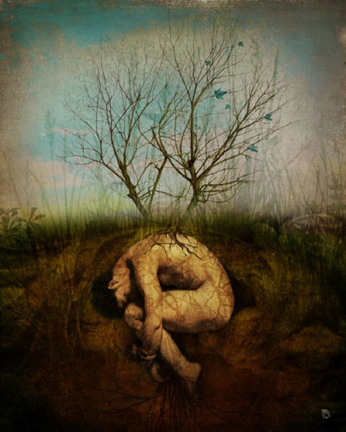 christian-schloe-dreaming-tree