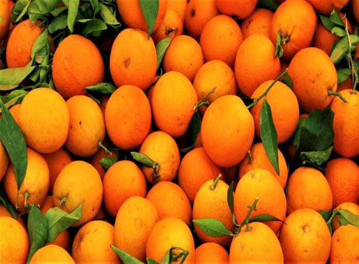orange-1900.jpg