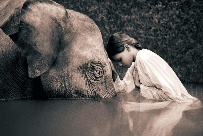 Contours gregory colbert life internet ru