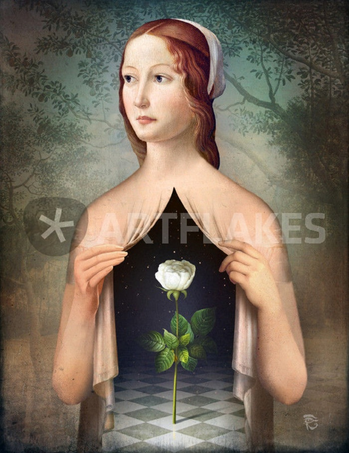 christian-schloe-pinterest com 12 the-rose