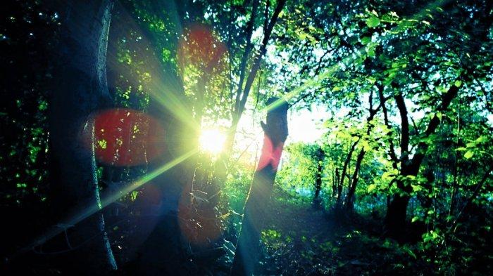 sunshine_eclipse_by_chickenlegends-d7ot1z1 on deviantart com